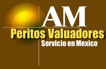 Am peritos valuadores autorizados y certificados.